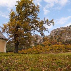 Národná prírodná rezervácia Podskalský Roháč