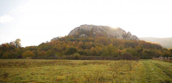 Prírodná pamiatka Bosmany
